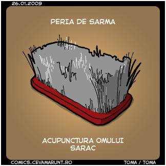 comic_2009-01-26_acupunctura