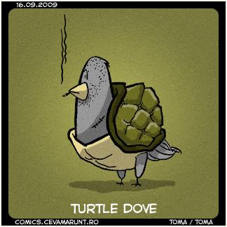 comic_2009-09-16_turtle