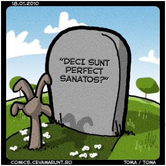 comic_2010-01-18_perfect_sanatos_u_c