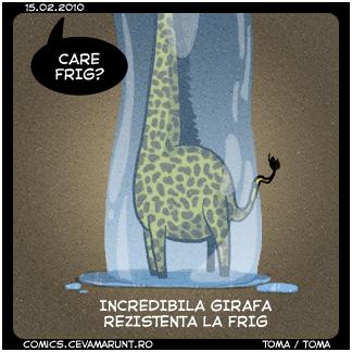 comic_2010-02-15_girafa